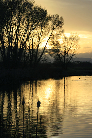 300-Sunset Rio Grande SWA
