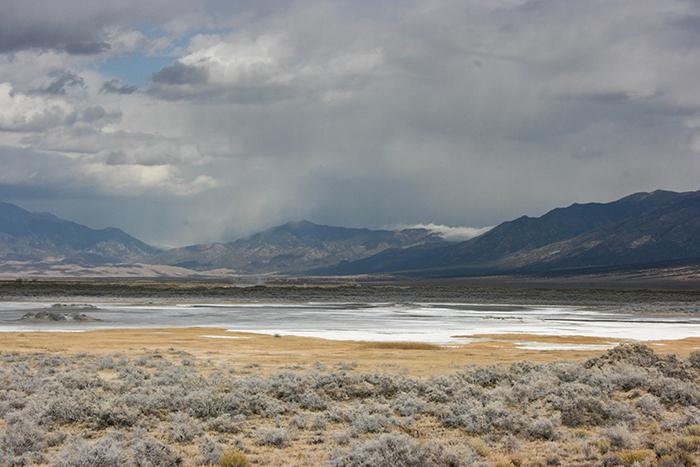 Blanca Wetland Playa