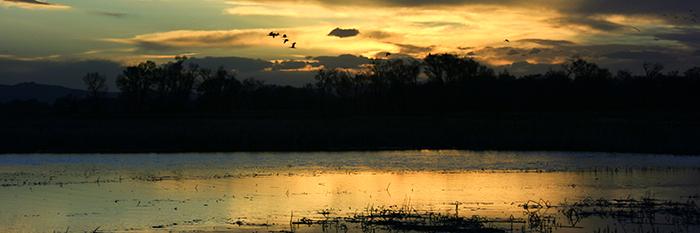 Sunset: Rio Grande SWA