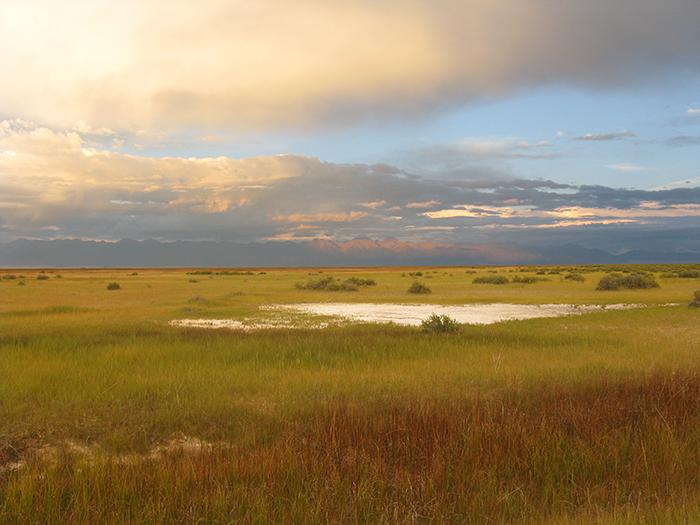 Sunset Playa: Rio Grande SWA